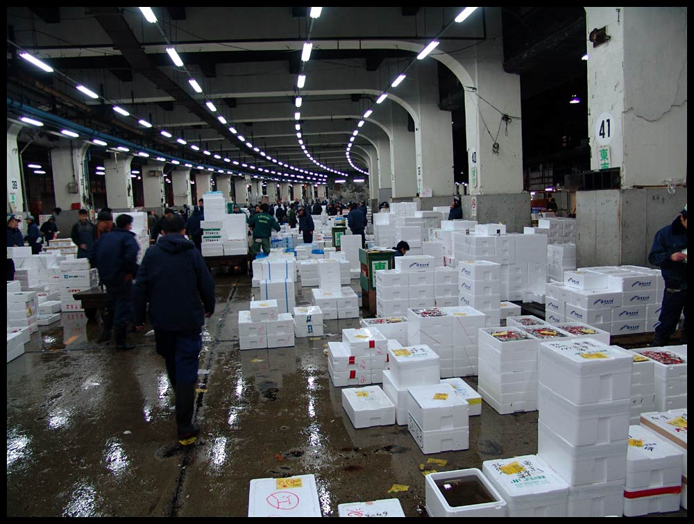 Fischmarkt in Tokyo