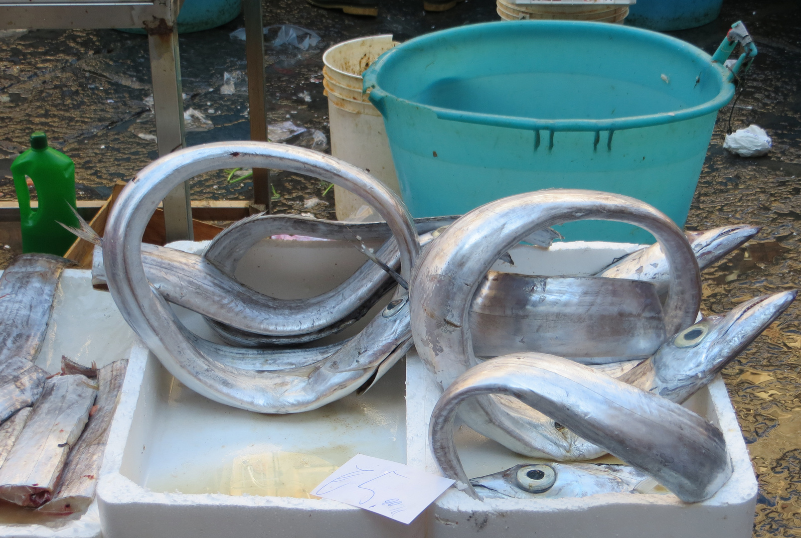 Fischmarkt La pescheria in Catania 1