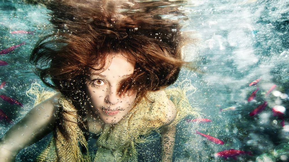 fish are jumping / Unterwasserfotos - Unterwasserfotoshooting - Underwaterphotography