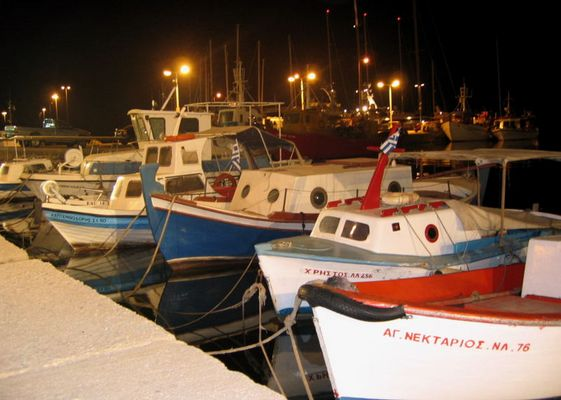 fish cutter by night