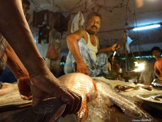 Fish market - Dhaka