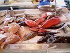 Fish Market in Aveiro