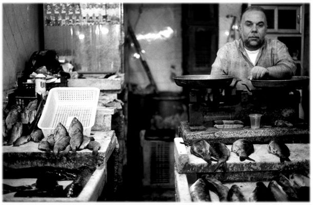 Fishermans Friend/Syria, Aleppo