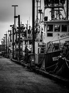 Fisherman's Terminal - Seattle Wa. USA