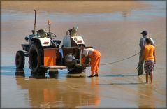 Fishermen working on the beach.