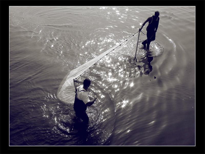 fishing for stars.