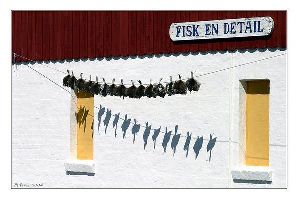 FISK EN DETAIL