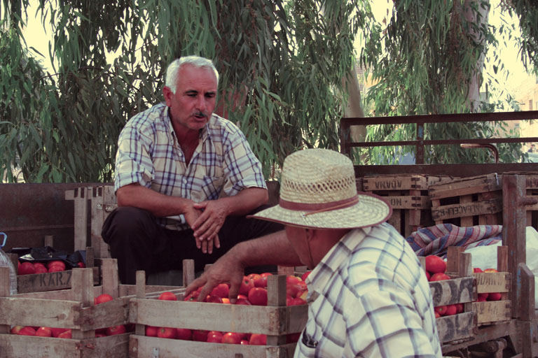 fist fight versus tomatoes