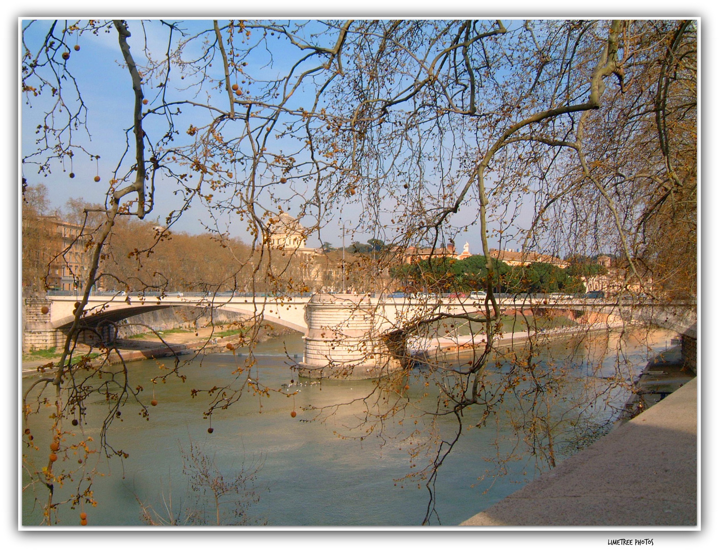 Fiume Tevere in Spring (2)