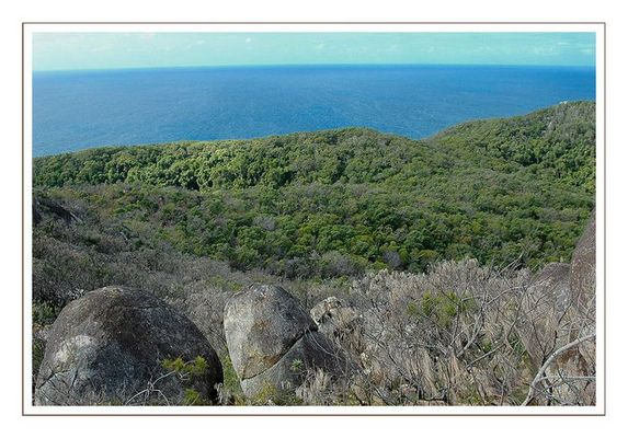 Fizroy Island - Australia