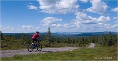 Fjällbiking 1 - Ein kleiner Aussichtsberg nahe Arvidsjaur