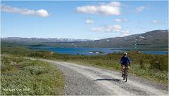 Fjällbiking 2 - Die Weite des Weges im Nationalpark Stora Sjöfallet