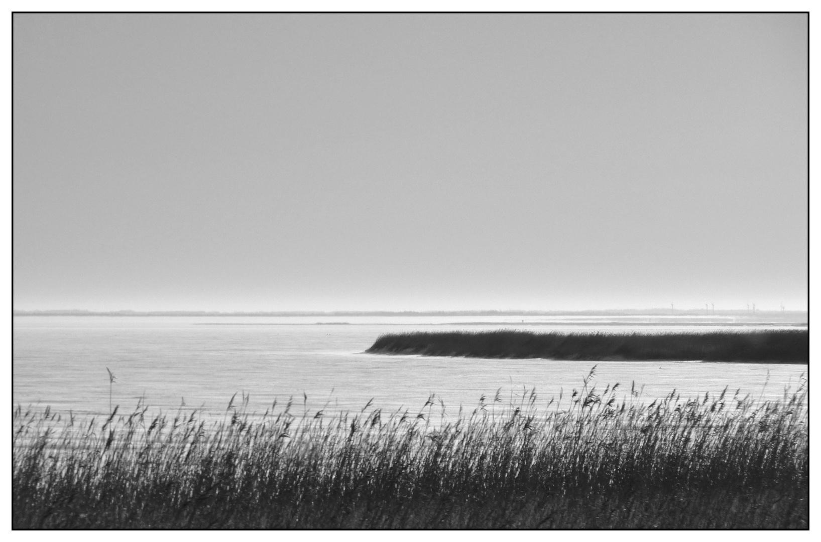 Fjordblick (4)