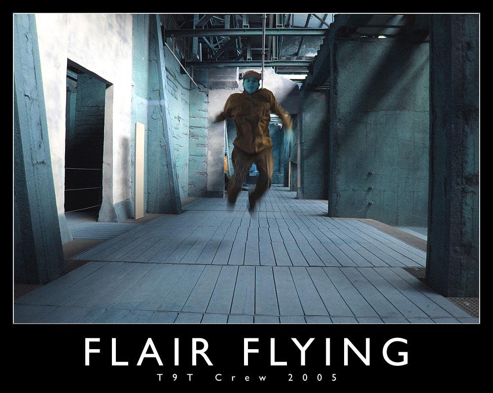 .: Flair Flying :.