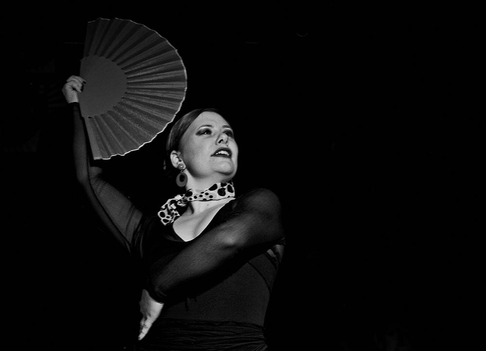 ~~ flamenco ~~