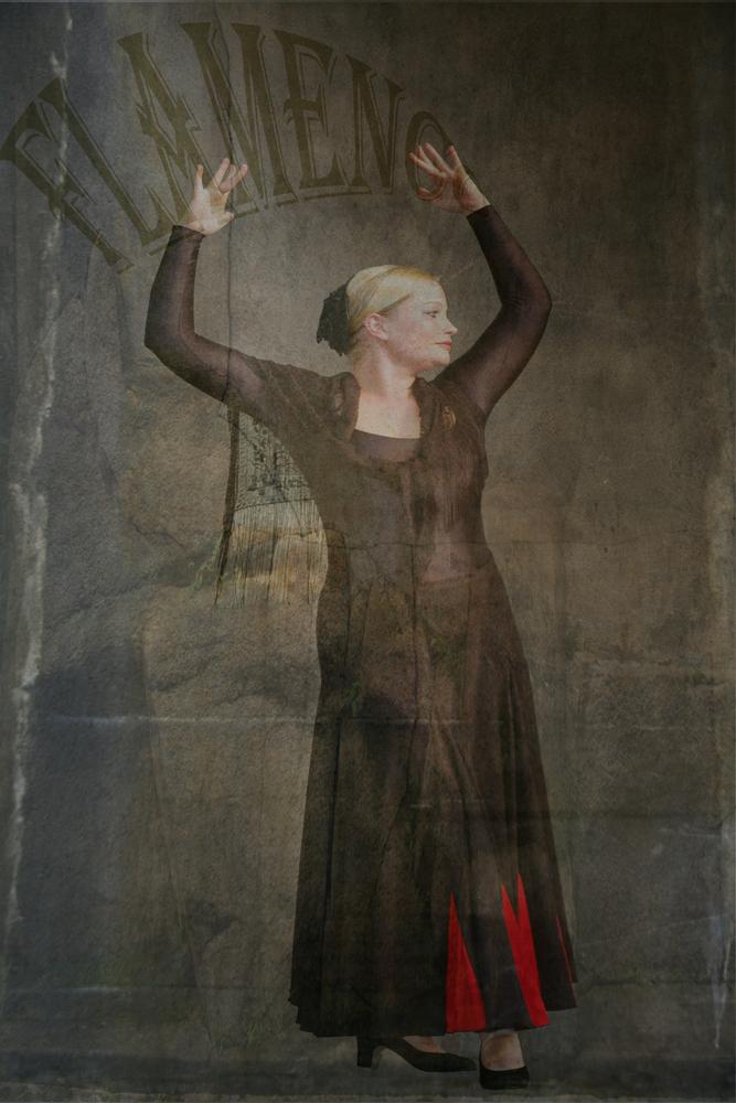 Flamenco Gesa