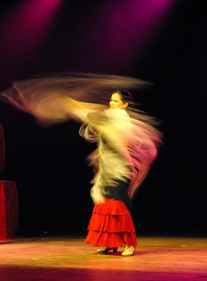 Flamenco singer and dancer