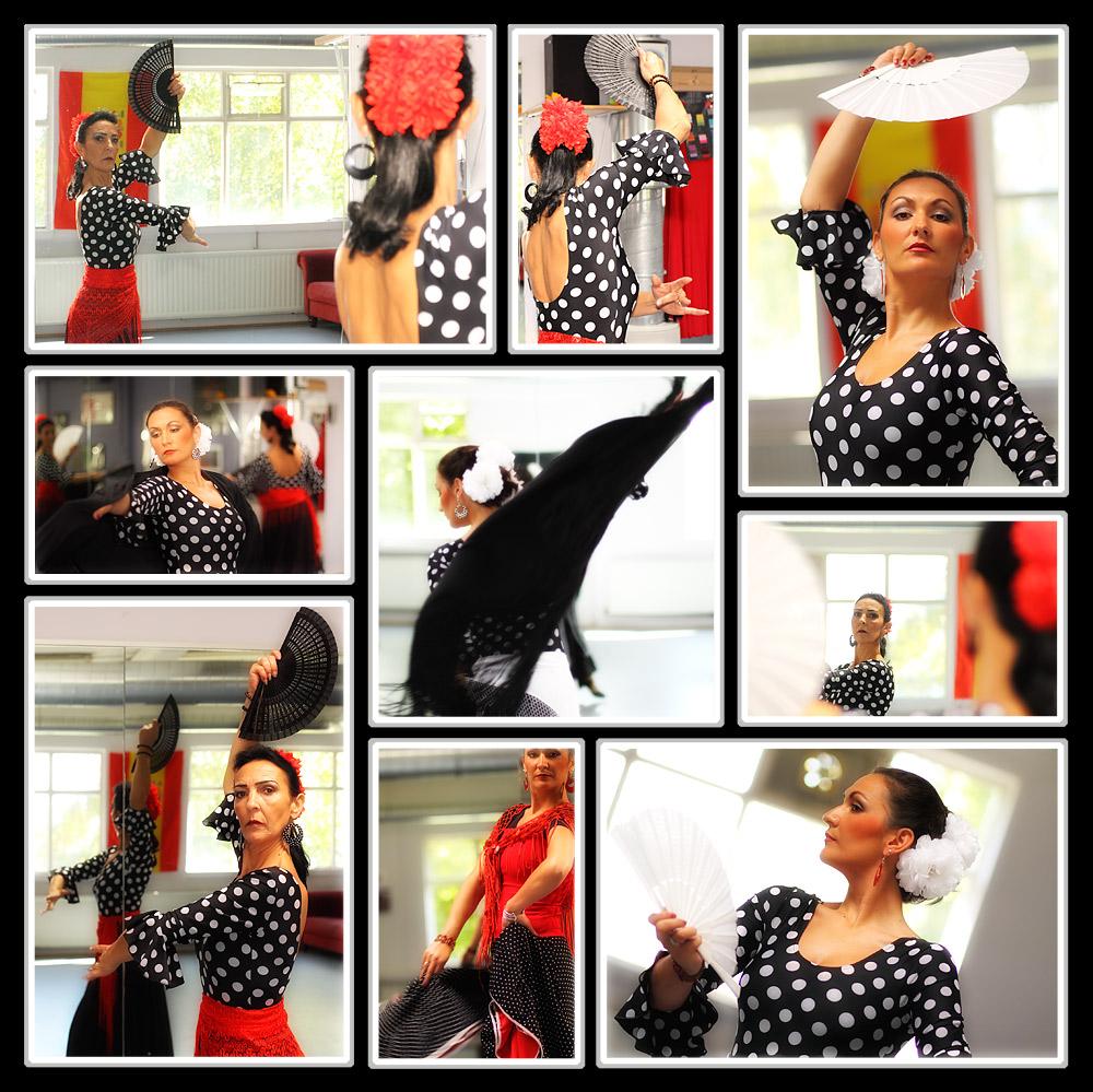 flamenco snapshot