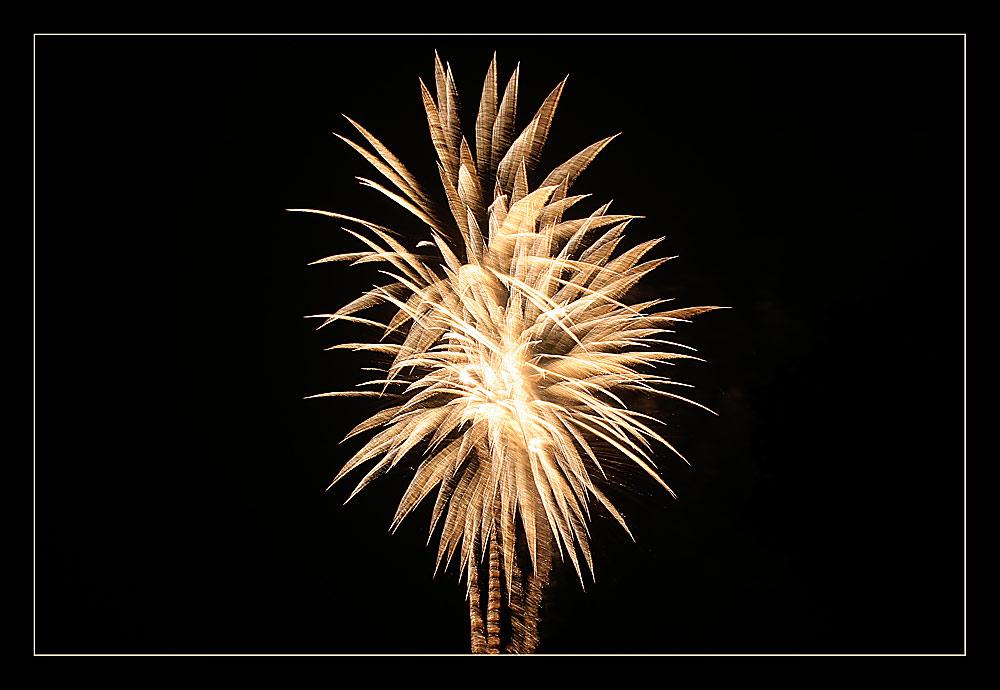 Flammen-Palme