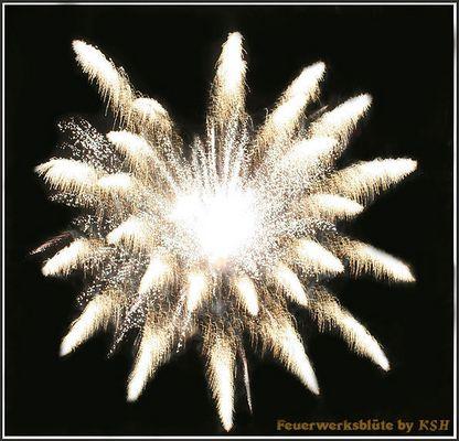 Flammende Blüte am Himmel (Flammende Sterne Gera)