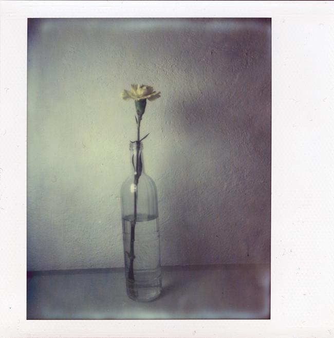Flasche mit Blume