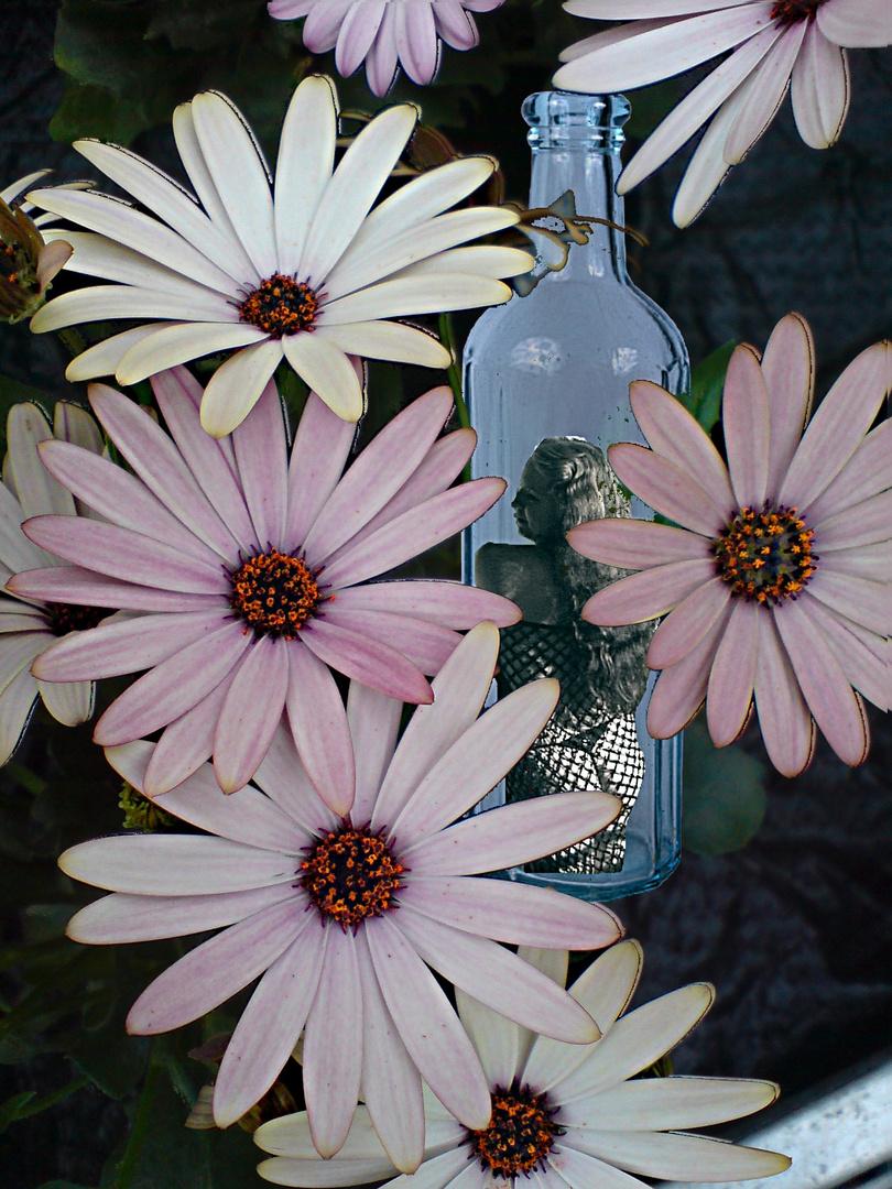Flaschenpost des Sommers