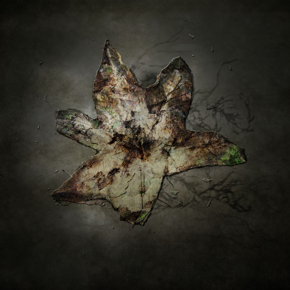 Fleur minérale