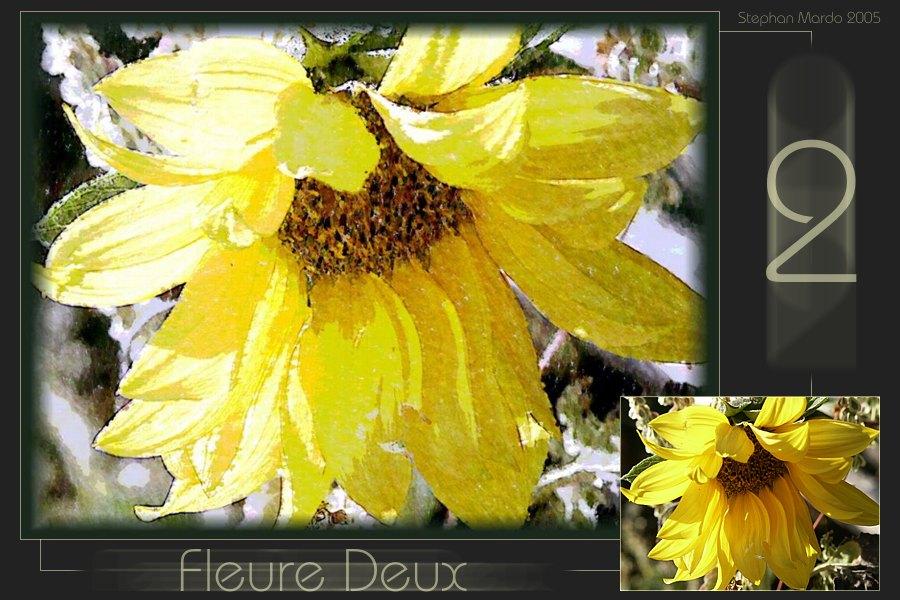 """""""Fleure Deux"""""""