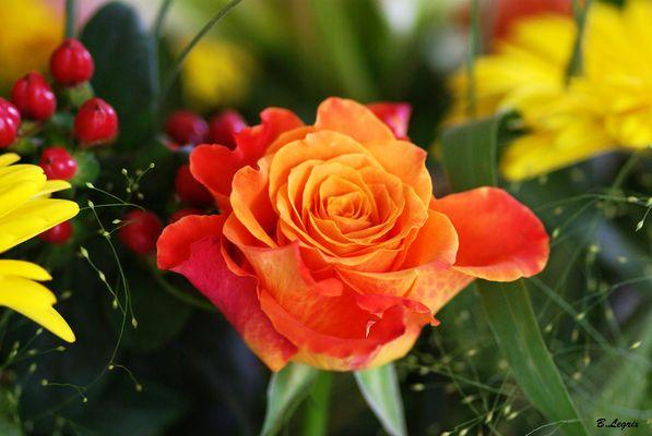 fleure1