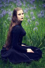 | fleurettes lilas |