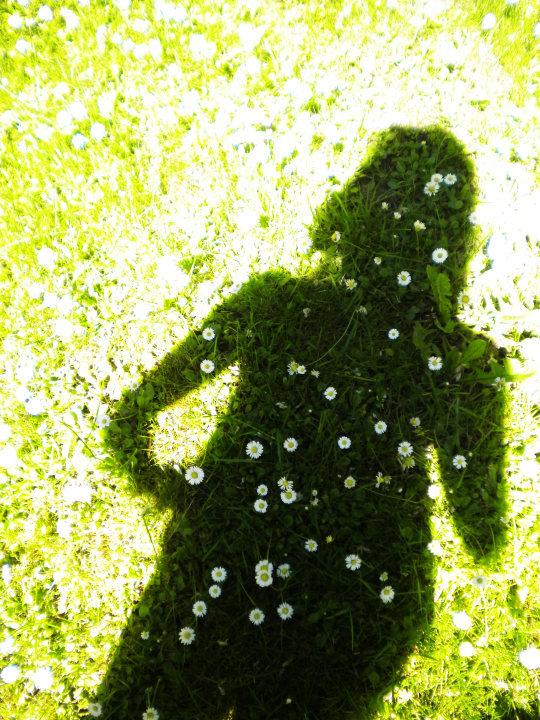 Fleurir les tombes avec nos ombres