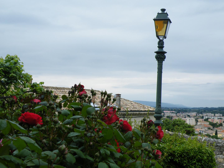fleurs des villes
