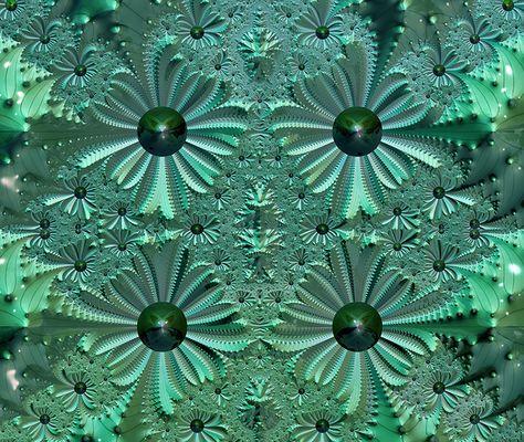 fleurs fractales