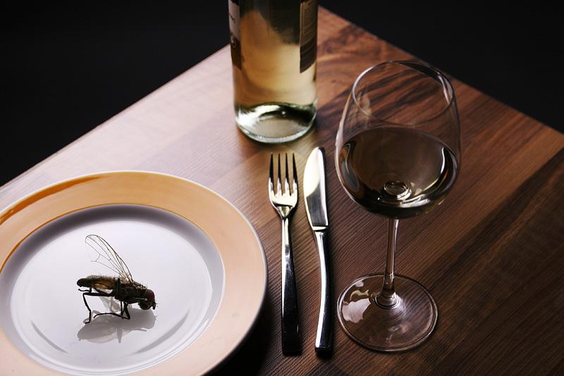 Fliege im Essen