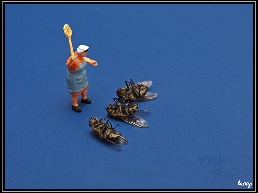Fliegen-Klatsche