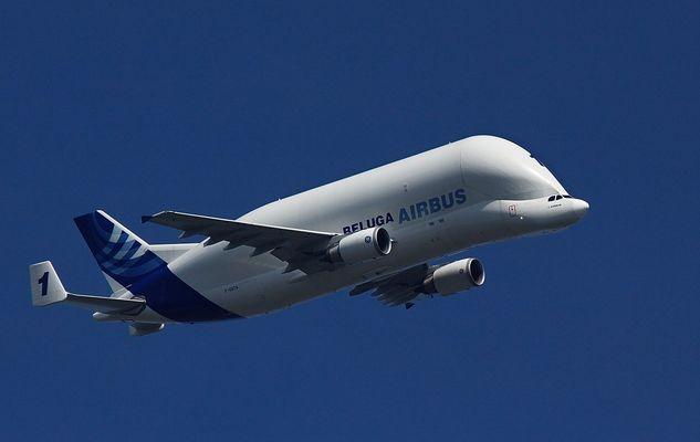 Fliegender Weißwal (Airbus Beluga)