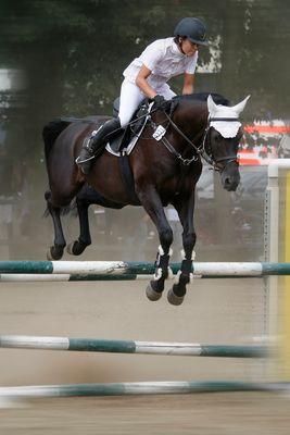 fliegendes Pferd