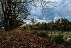 Fließende Herbstfarben