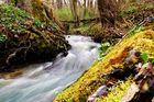 Fließender Fluss