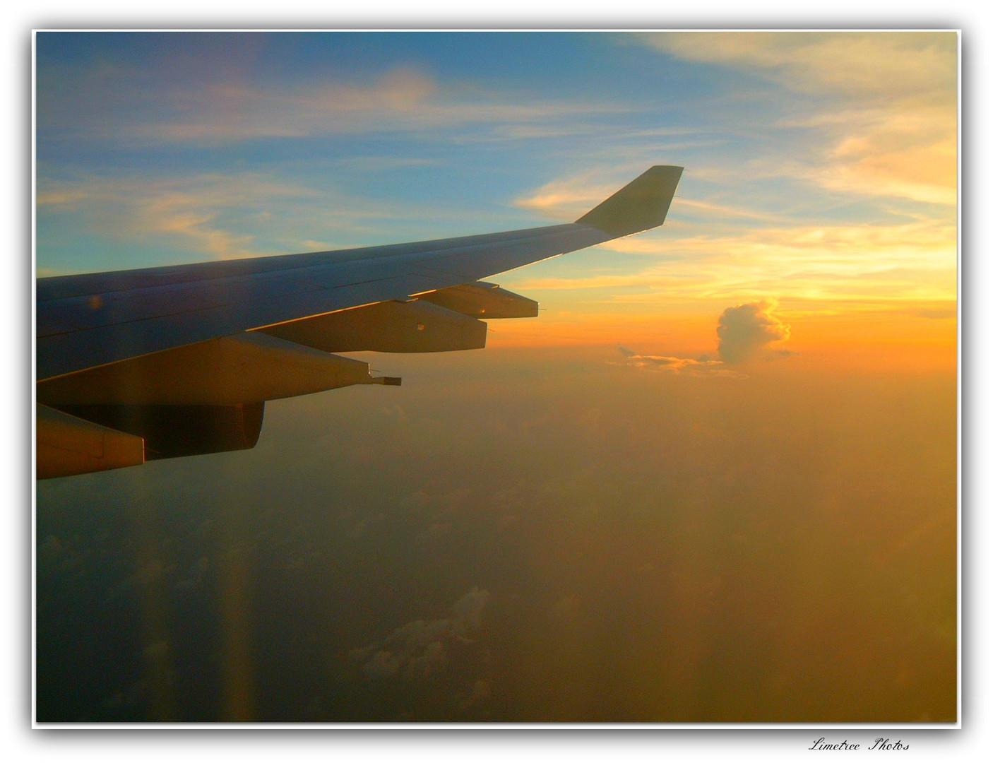 Flight into the Caribbean