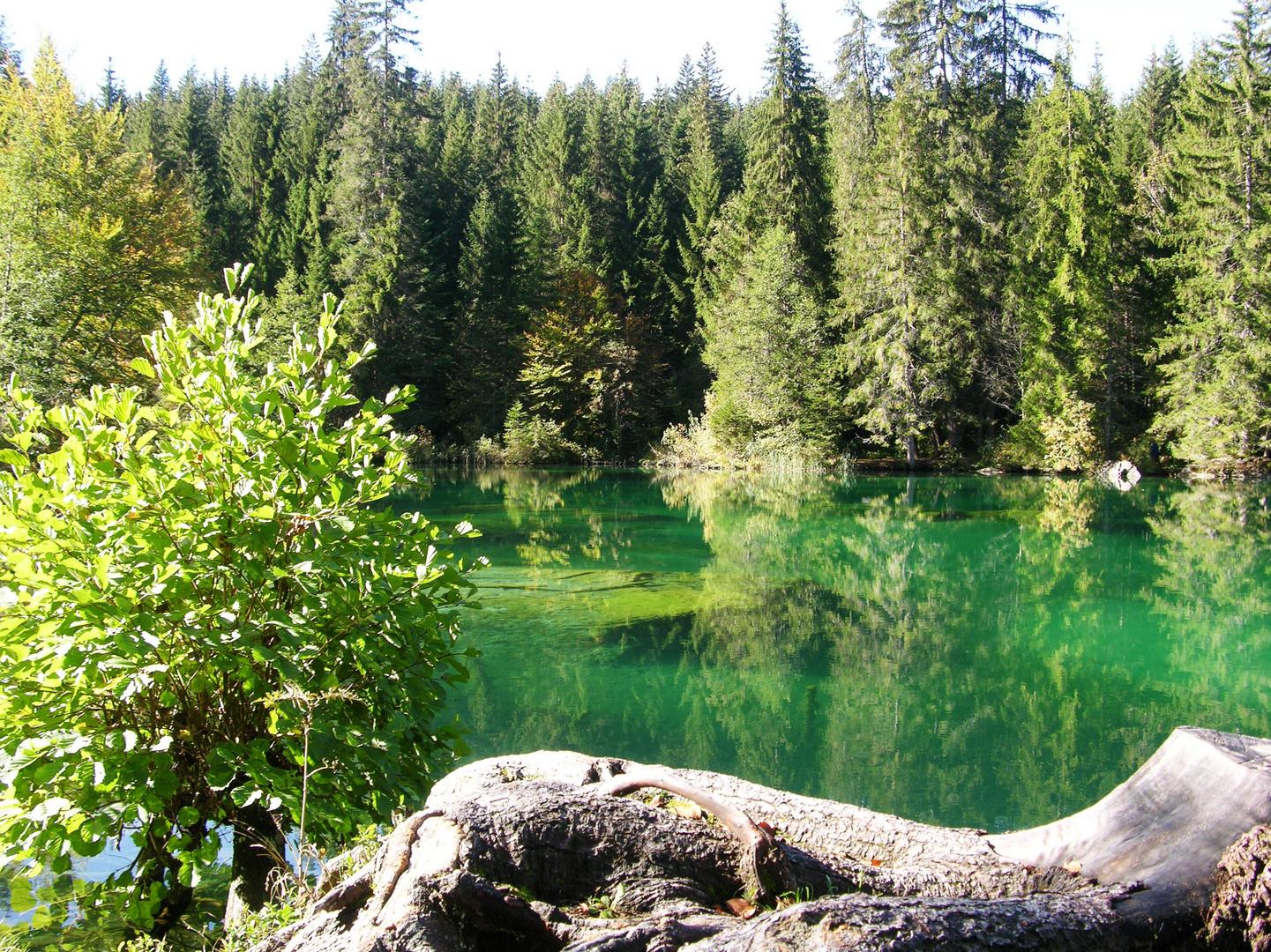 Flims - am Crestasee bei Trin