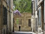 Flâner dans les ruelles d'Arles ...