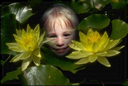 Flo der Elf