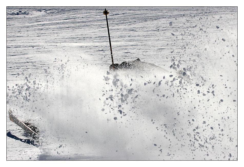 Floh In Frozen Water