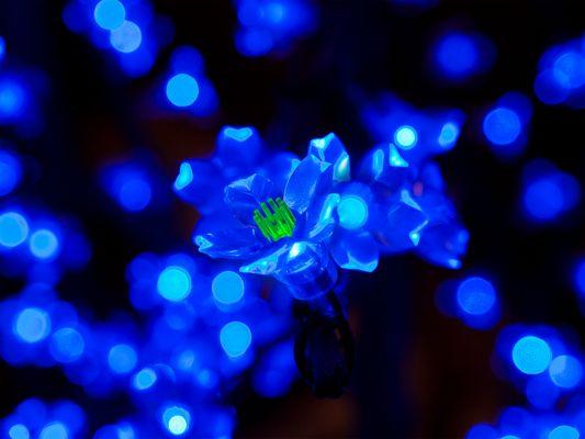Flor de Kryptonita AZUL
