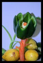 flor o pimiento ?