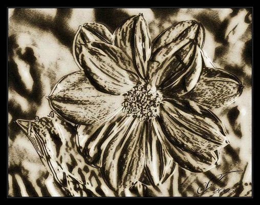 .: floral drab :.