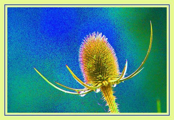 Florale Struktur II