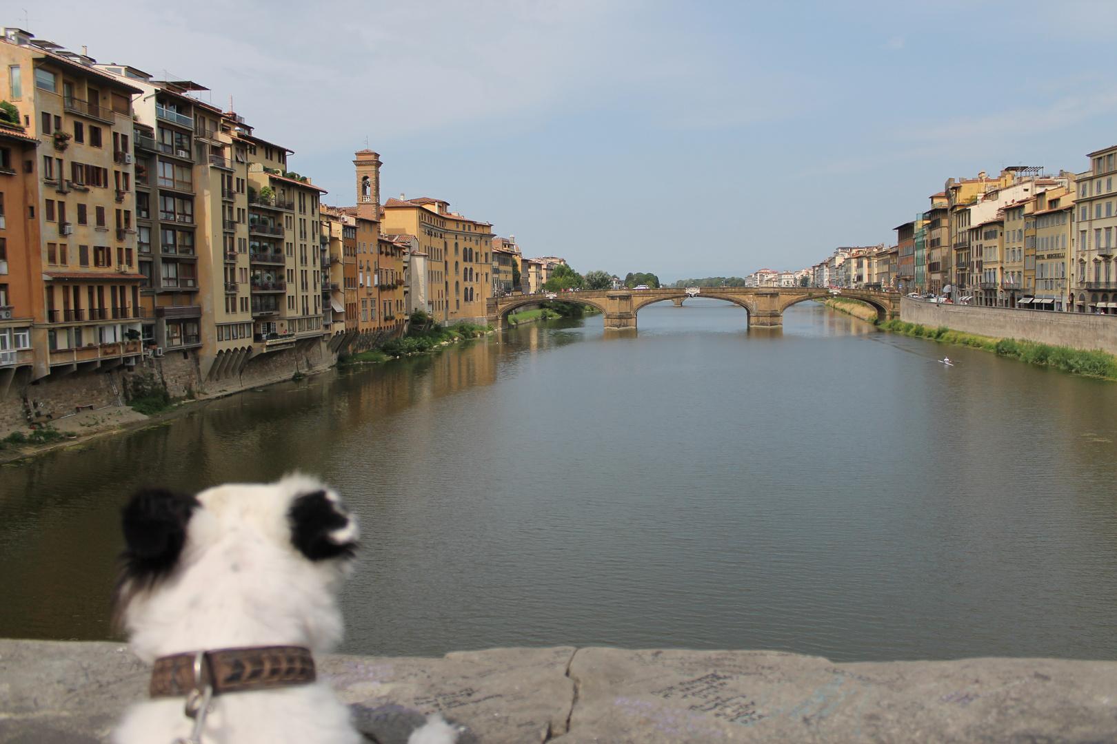Florenz 08-2013