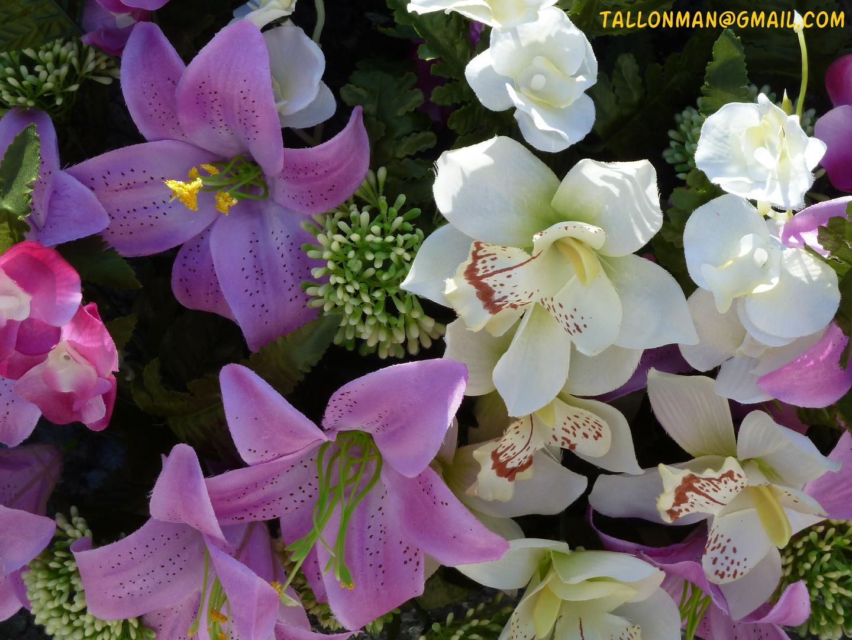 Flores (37)